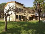 Montecarlo chateau in Lucca - Tuscan farmhouse in olive trees and vineyards