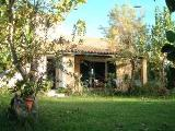 Corfu holiday villa with pool - Charming home on Corfu, Greek Islands