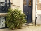 Brussels holiday Bed and Breakfast - holiday home in Brussels, Belgium