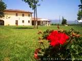 Relaxing Montagnano bed and breakfast - Rural B & B in Tuscany