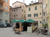 Tusca guest house in historic center of lucca - Lucca area vacation house